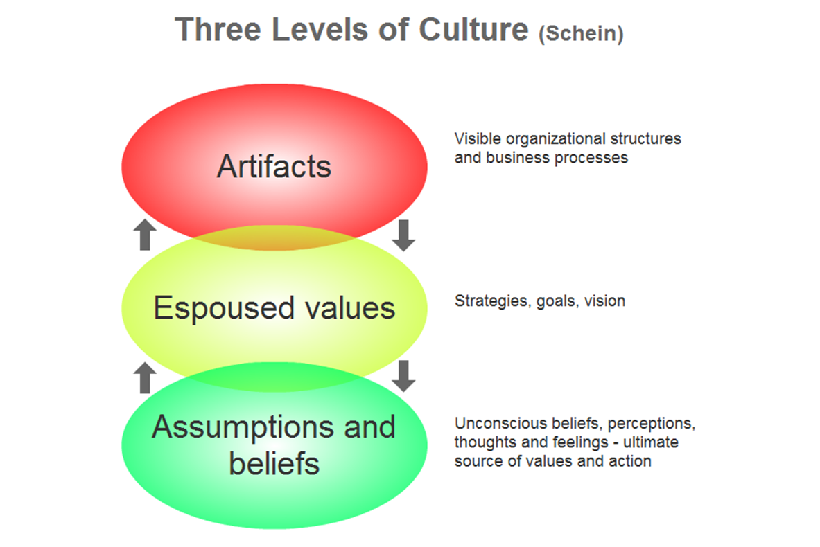 Organizational Culture by Ed Schein.