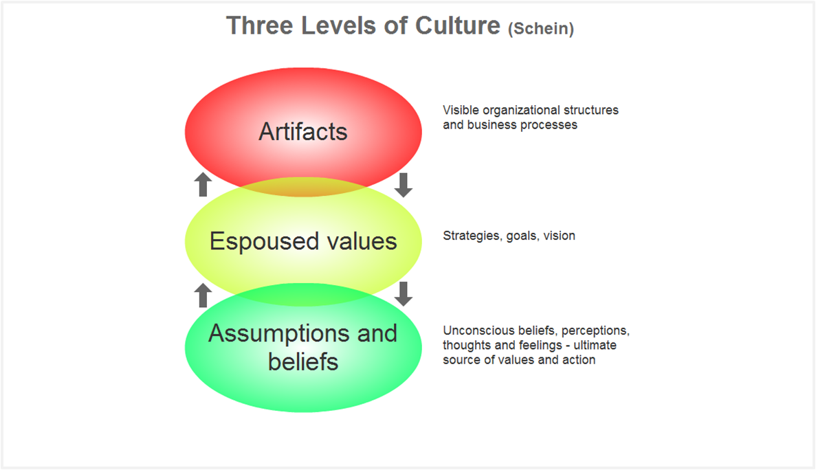 an explanation of the organizational cultural theory The topics of leadership and organizational culture have leadership theories and organizational of the organization according to this theory the.